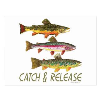 Forelle-Fang und Freigabe Postkarten