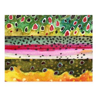 Forelle-Fischen Postkarte