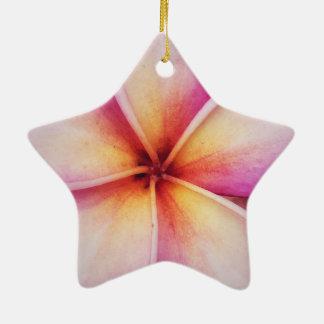 Frangipane Blume Dble-Versah Stern-Verzierung mit Keramik Ornament