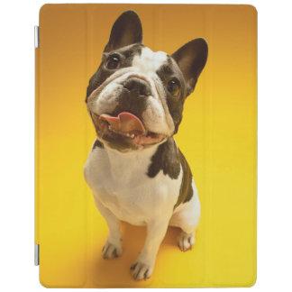 Französische Bulldogge, die oben schaut iPad Hülle