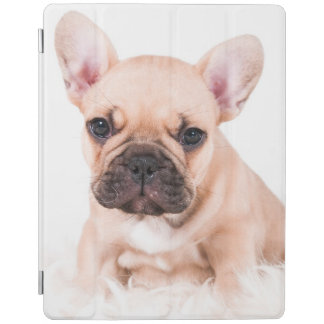 Französische Bulldogge iPad Hülle