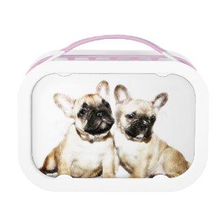 Französische Bulldoggen Brotdose