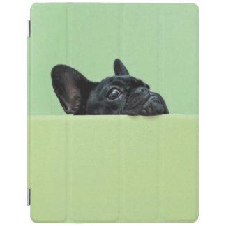 Französische Bulldoggen-Welpe, der über Wand iPad Smart Cover