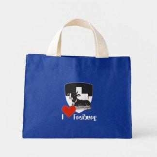 Freiburg / Fribourg Schweiz / Suisse Tasche