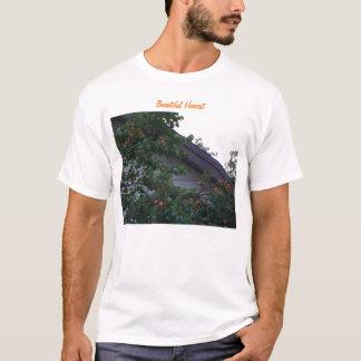Freigebige Ernte, Aprikosen T-Shirt