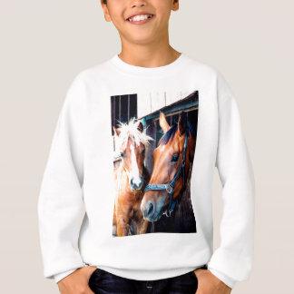 Freunde Sweatshirt