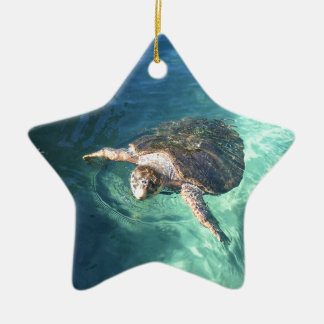 Freundliche Schildkröte in Mexiko Keramik Ornament