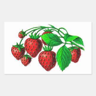 Frische Erdbeeren Rechteckiger Aufkleber