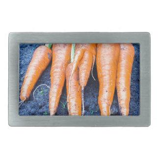 Frische Karotten, die auf schwarzem soil.JPG Rechteckige Gürtelschnalle