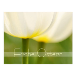 Frohe Ostern elegante Tulpen Postkarten