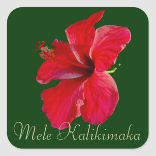 Frohe Weihnachten Hawaii.Mel Aufkleber Zazzle At