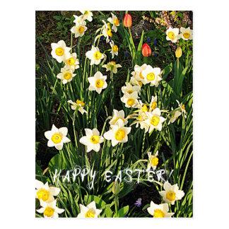 Fröhliche Ostern Postkarten
