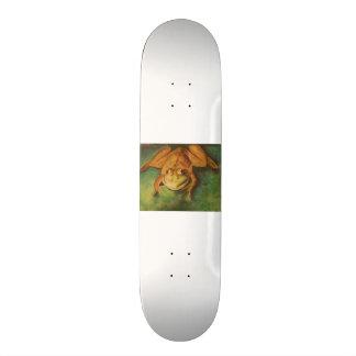 Frosch in den Pastellen Skateboardbretter