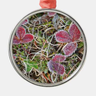 Frost bedeckte Blätter, Kanada Silbernes Ornament