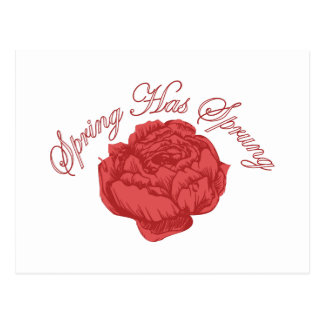 Frühling ist entsprungen postkarte