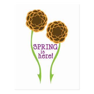 Frühling ist hier! postkarte