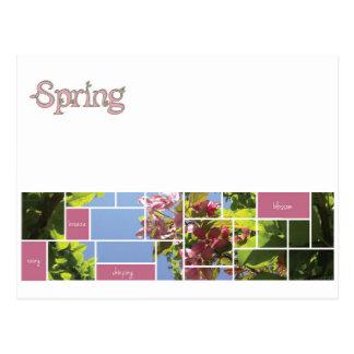 Frühling Postkarte