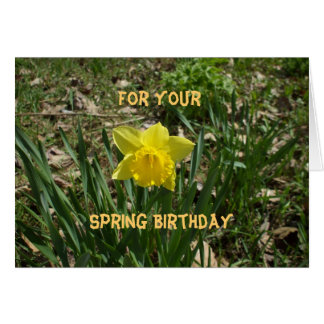 Frühlings-Geburtstag-Gelbe Narzisse Karte