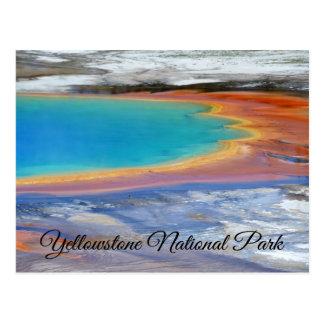 Frühlings-Wyoming-Postkarte Yellowstone Postkarte