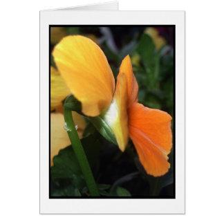 Frühlings-Zeit-Blume Grußkarte