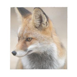 Fuchs Notizblock