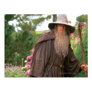 Gandalf mit Hut Postkarte