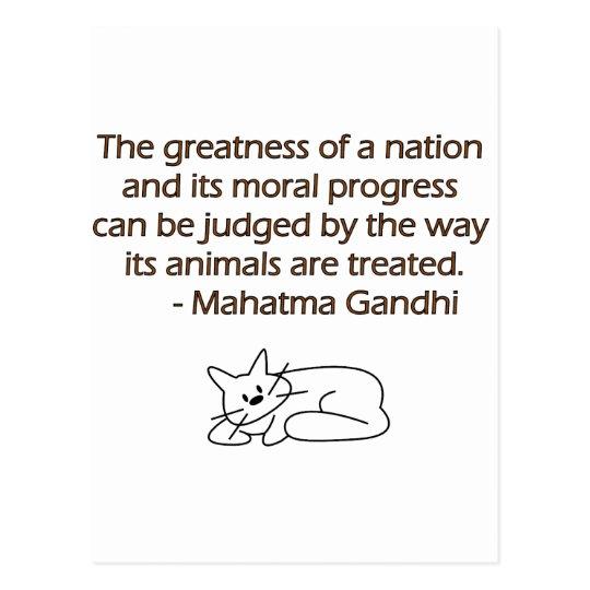 Gandhi Tier Zitat Mit Katze Postkarte Zazzleat