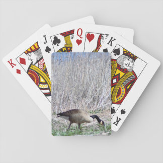 Gans-Foto Spielkarten