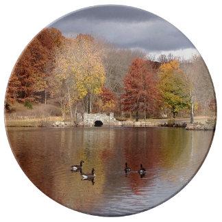 Gänse in reflektierten Herbstfarben - Teller