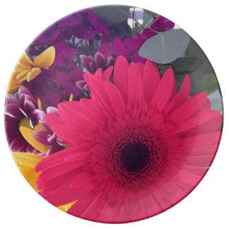 Gänseblümchen-Blumen Teller