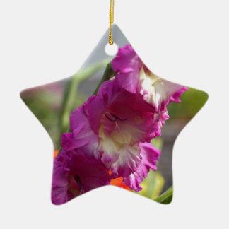 Garten Gladiolus (Gladiolus x hortulanus) Keramik Ornament