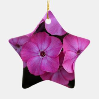 Garten Phlox (Phlox paniculata) Keramik Ornament