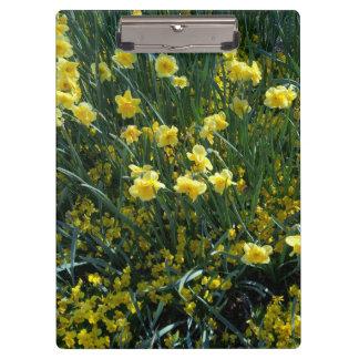 Garten voll der gelben Narzissen Klemmbrett