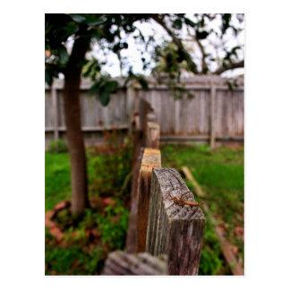 Garten-Zaun Postkarte