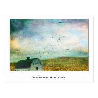 geben Sie mir zurück den Offenen Himmel - Postkarte