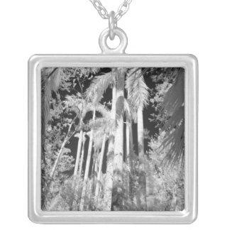 Gebürtige Königpalmen in Fakahatchee Strang, Halskette Mit Quadratischem Anhänger
