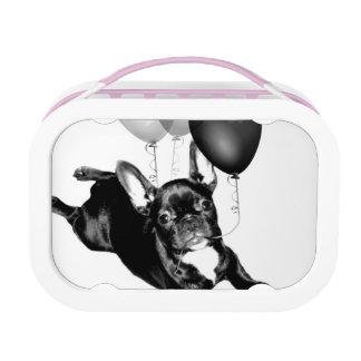 Geburtstags-französische Bulldogge Brotdose