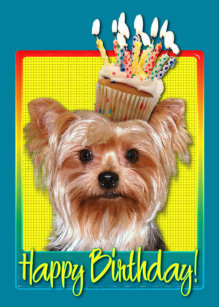 Yorkshire Terrier Geburtstag Geschenke Zazzle At