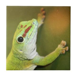 Geckogesicht Fliese