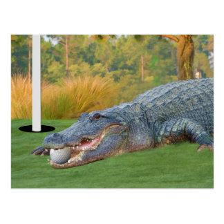 Gefährliche Lügen-Golf spielende Postkarte