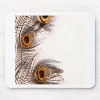 gefiederter Hintergrund des Pfaus Mousepads