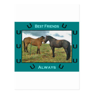 Gefühl der besten Freunde mit Pferden Postkarte