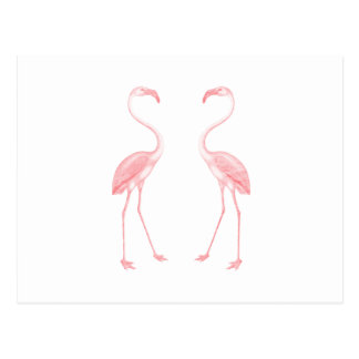 Gegenüberstellen der Flamingos Postkarte