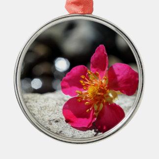 Geheimnis-rosa Blume Rundes Silberfarbenes Ornament