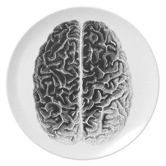 Gehirn Flacher Teller