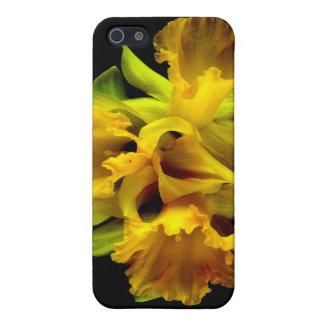 Gekräuselte Blumen-Narzissen-drastische Schutzhülle Fürs iPhone 5