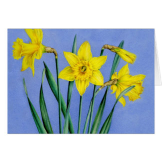 Gelb gemalte Aquarell Narzissen-Kunstkarte Karte