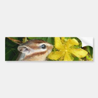 Gelbe Blume und Chipmunk (4) Autoaufkleber