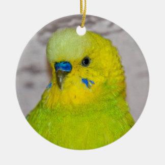 Gelbe Budgie Verzierung Keramik Ornament