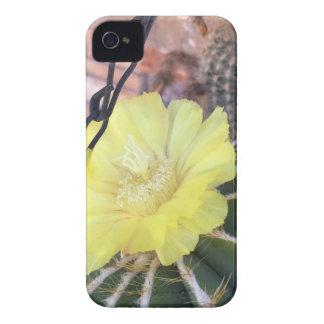 Gelbe Kaktus-Blume Case-Mate iPhone 4 Hülle